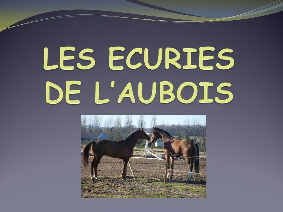 Situation géographique A 15 km et20 mn en voiture (covoiturage) du LEGTA de Nevers, sur la commune de La Guerche-sur-L aubois