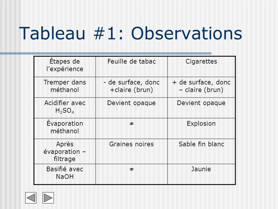 Tableau #1: Observations Étapes de lexpérience Feuille de tabacCigarettes Tremper dans méthanol - de surface, donc +claire (brun) + de surface, donc –