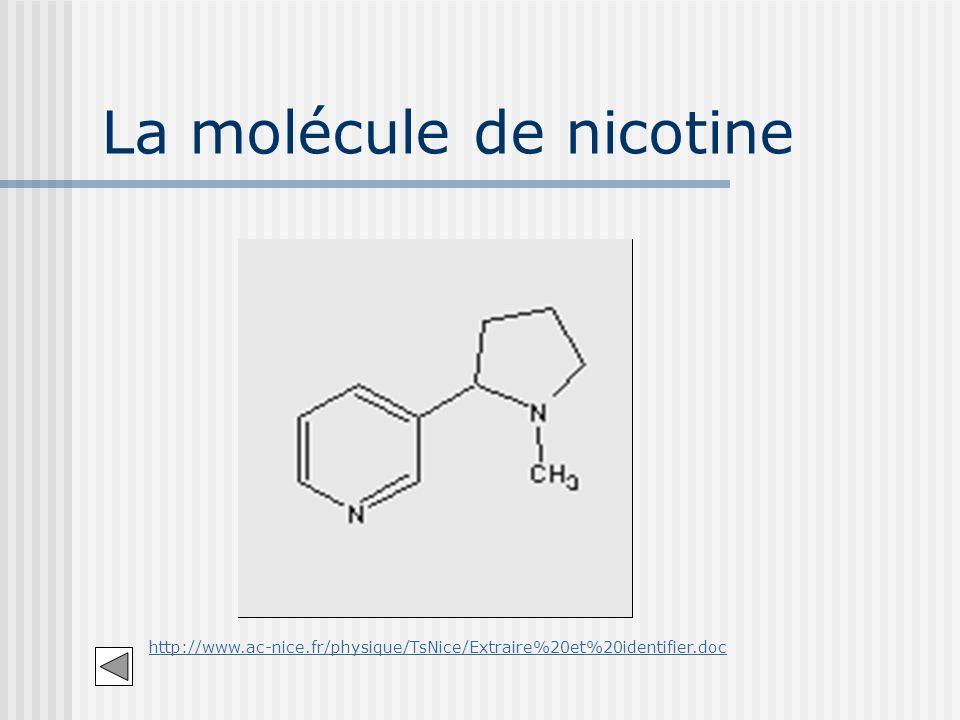 La molécule de nicotine http://www.ac-nice.fr/physique/TsNice/Extraire%20et%20identifier.doc