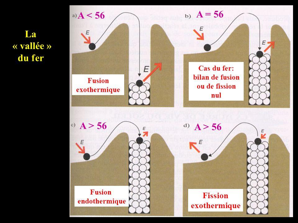 Fusion exothermique Cas du fer: bilan de fusion ou de fission nul A < 56 A = 56 Fusion endothermique Fission exothermique A > 56 La « vallée » du fer