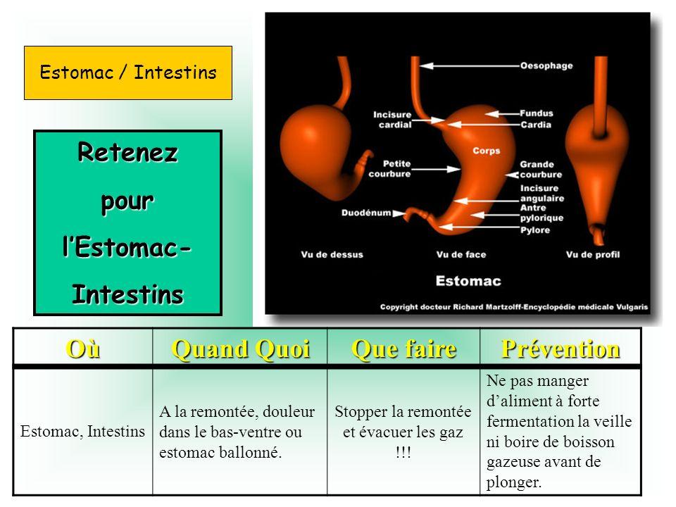 RetenezpourlEstomac-Intestins Où Quand Quoi Que faire Prévention Estomac, Intestins A la remontée, douleur dans le bas-ventre ou estomac ballonné. Sto