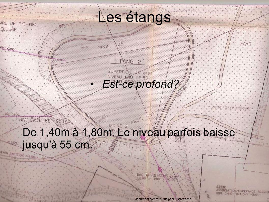 Les étangs Est-ce profond. De 1,40m à 1,80m. Le niveau parfois baisse jusqu à 55 cm.