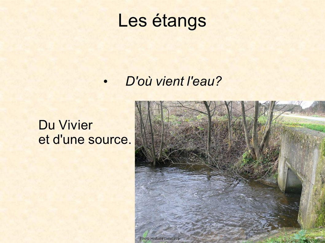 Les étangs D où vient l eau Du Vivier et d une source. Photo Histoire collective