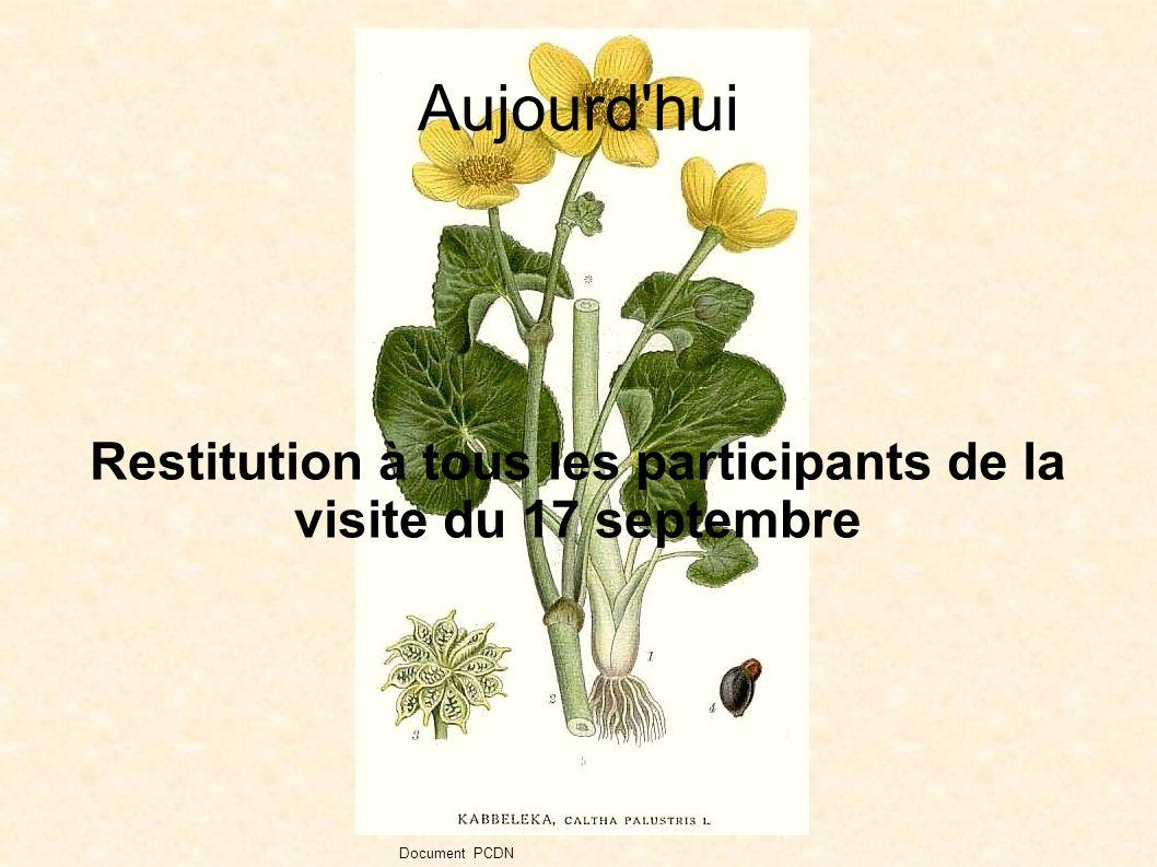Aujourd hui Restitution à tous les participants de la visite du 17 septembre Document PCDN