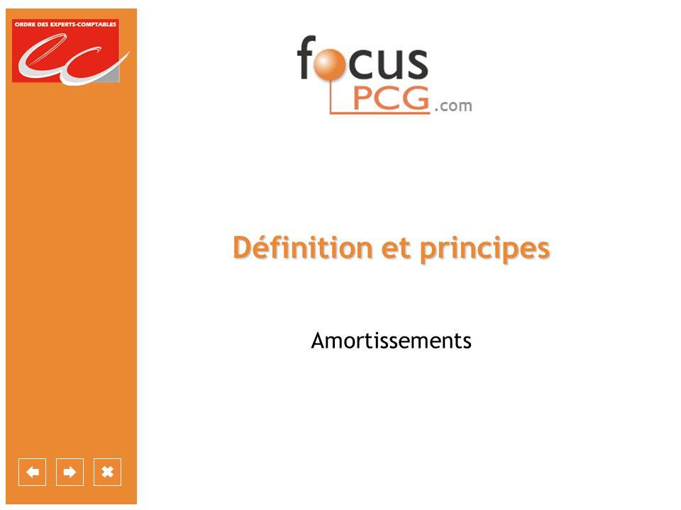 .com Définition et principes Amortissements