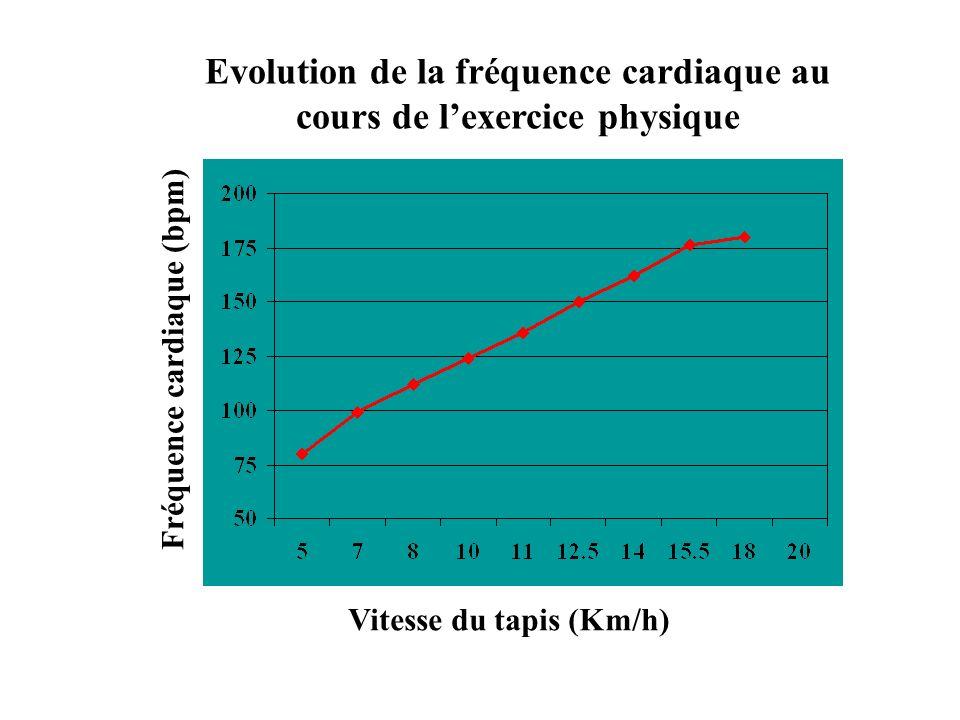 Evolution de la fréquence cardiaque au cours de lexercice physique Vitesse du tapis (Km/h) Fréquence cardiaque (bpm)