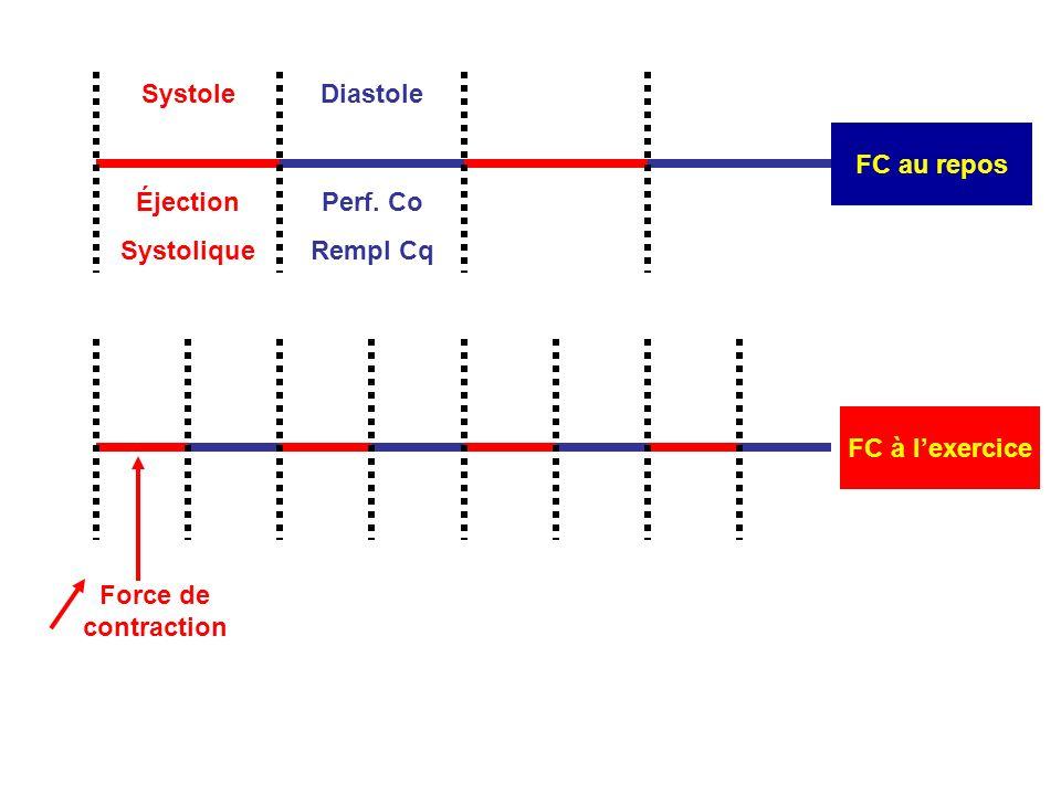 FC à lexercice Force de contraction Systole FC au repos Diastole Éjection Systolique Perf.