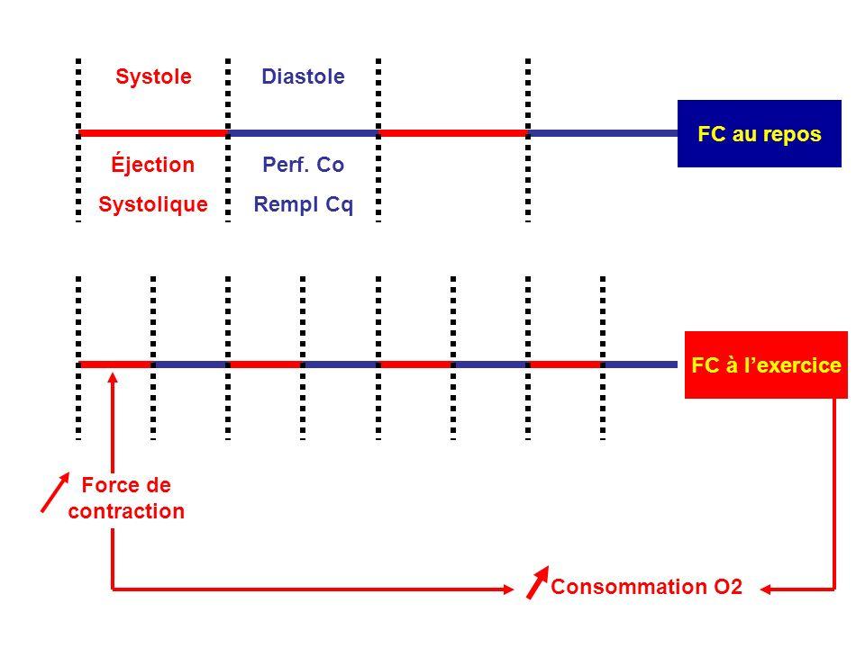 FC à lexercice Force de contraction Consommation O2 Systole FC au repos Diastole Éjection Systolique Perf.