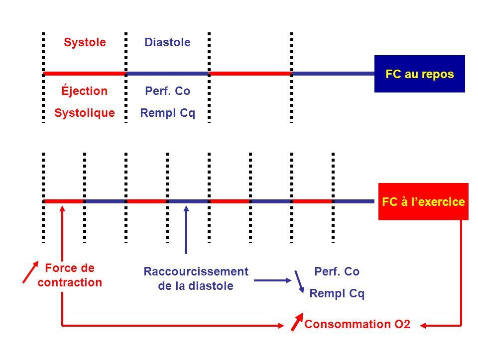 FC à lexercice Force de contraction Consommation O2 Raccourcissement de la diastole Systole FC au repos Diastole Éjection Systolique Perf.