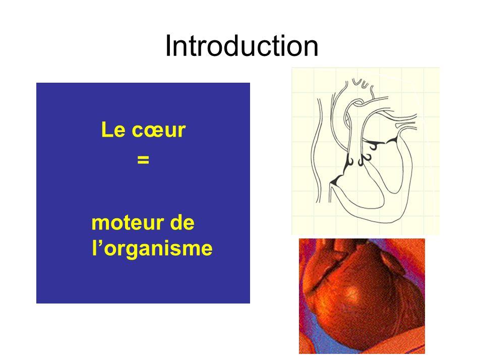 Introduction Le cœur = moteur de lorganisme