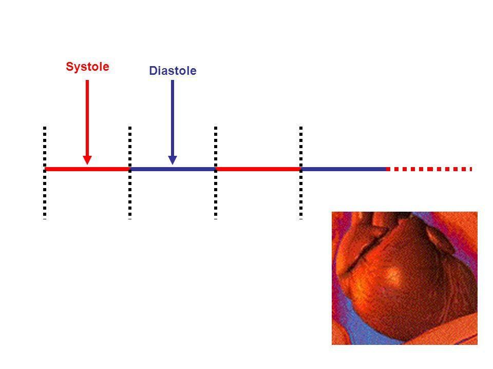 Systole Diastole