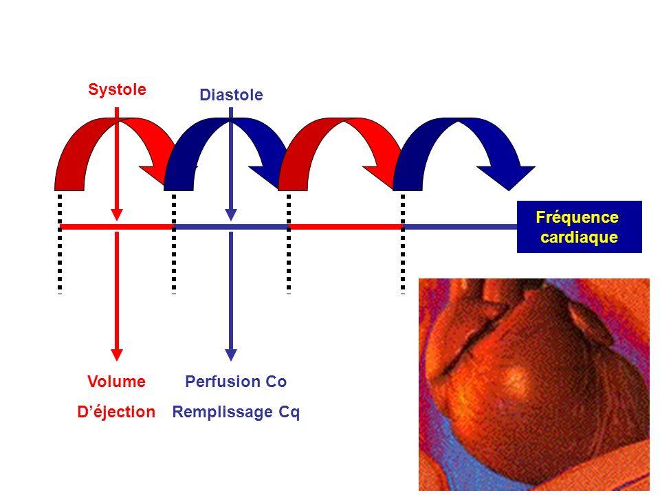 Systole Fréquence cardiaque Diastole Volume Déjection Perfusion Co Remplissage Cq