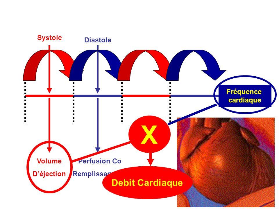 Systole Fréquence cardiaque Diastole Volume Déjection Perfusion Co Remplissage Cq X Debit Cardiaque