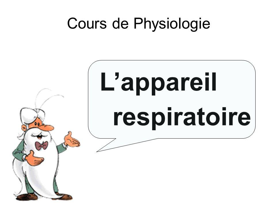 II.Anatomie 1 / 1 c) c) La plèvre La plèvre est lenveloppe des poumons.