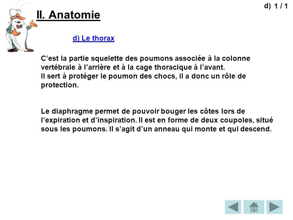 II. Anatomie 1 / 1 d) d) Le thorax Cest la partie squelette des poumons associée à la colonne vertébrale à larrière et à la cage thoracique à lavant.