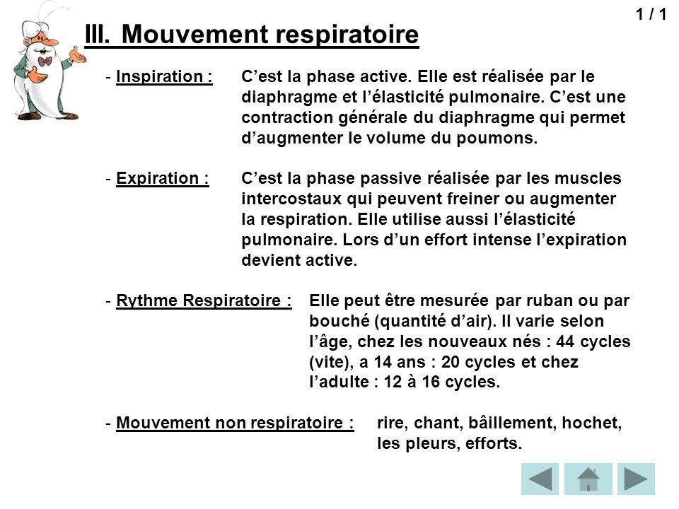 III. Mouvement respiratoire 1 / 1 - Inspiration : Cest la phase active. Elle est réalisée par le diaphragme et lélasticité pulmonaire. Cest une contra