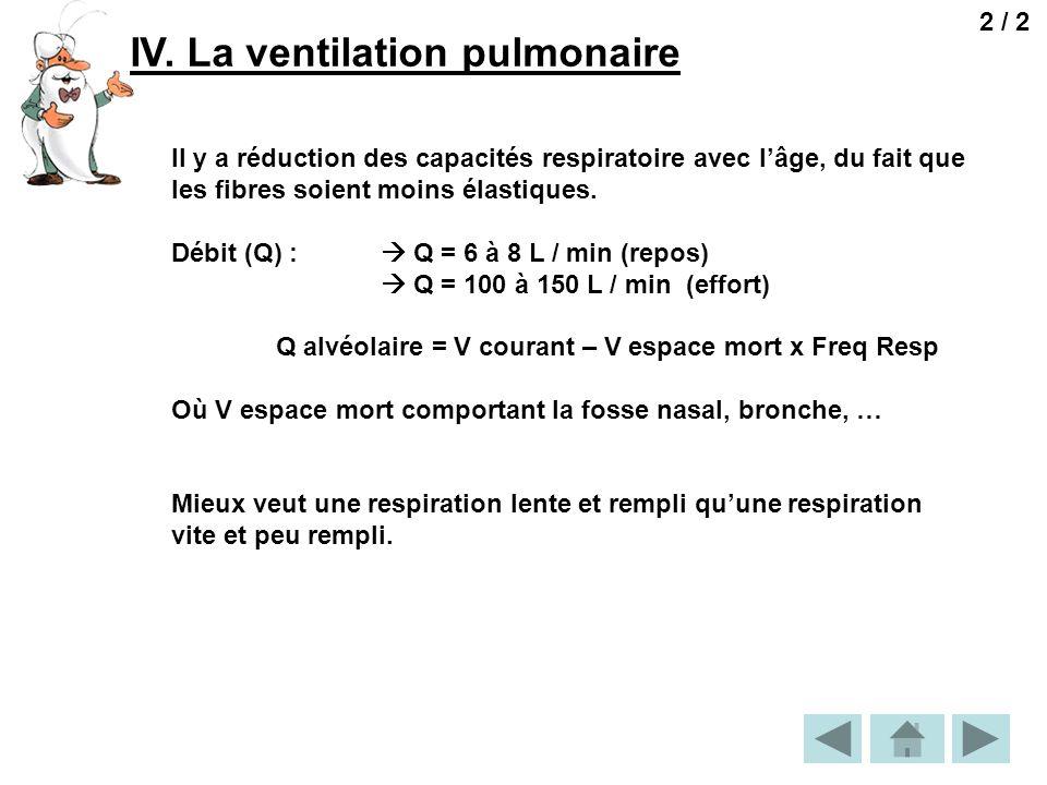 IV. La ventilation pulmonaire 2 / 2 Il y a réduction des capacités respiratoire avec lâge, du fait que les fibres soient moins élastiques. Débit (Q) :
