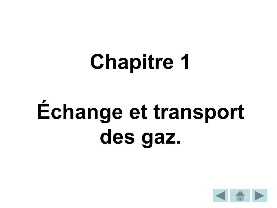 Chapitre 1 Échange et transport des gaz.