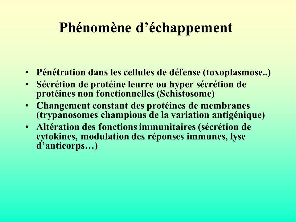 Phénomène déchappement Pénétration dans les cellules de défense (toxoplasmose..) Sécrétion de protéine leurre ou hyper sécrétion de protéines non fonc