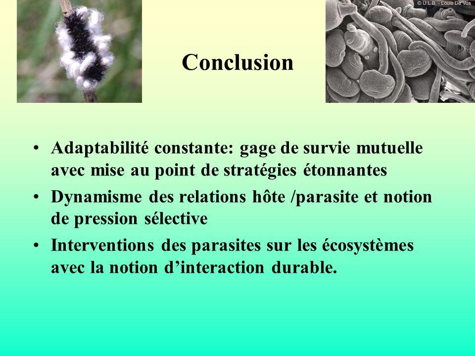 Conclusion Adaptabilité constante: gage de survie mutuelle avec mise au point de stratégies étonnantes Dynamisme des relations hôte /parasite et notio
