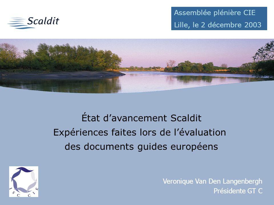 État davancement Scaldit Expériences faites lors de lévaluation des documents guides européens Veronique Van Den Langenbergh Présidente GT C Assemblée plénière CIE Lille, le 2 décembre 2003
