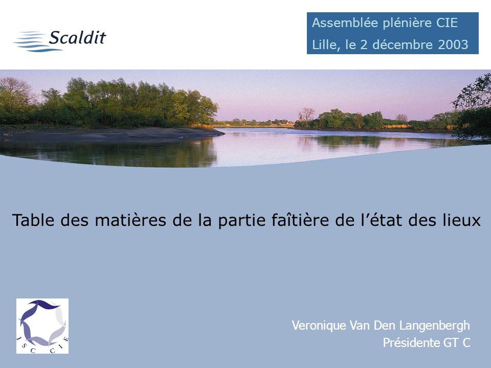 Table des matières de la partie faîtière de létat des lieux Veronique Van Den Langenbergh Présidente GT C Assemblée plénière CIE Lille, le 2 décembre 2003