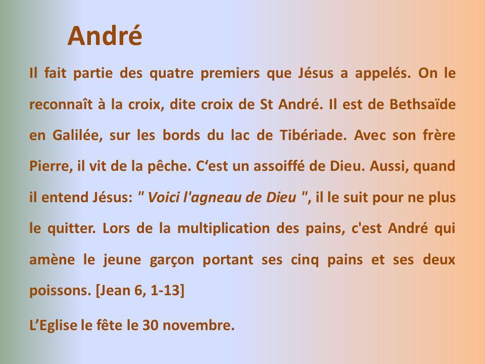 Il fait partie des quatre premiers que Jésus a appelés. On le reconnaît à la croix, dite croix de St André. Il est de Bethsaïde en Galilée, sur les bo