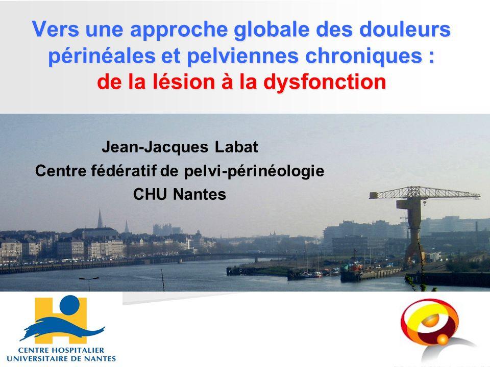 Jean-Jacques Labat Centre fédératif de pelvi-périnéologie CHU Nantes Vers une approche globale des douleurs périnéales et pelviennes chroniques : de l