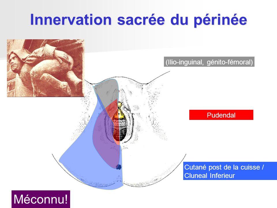 (Ilio-inguinal, génito-fémoral) Pudendal Innervation sacrée du périnée Cutané post de la cuisse / Cluneal Inferieur Méconnu!