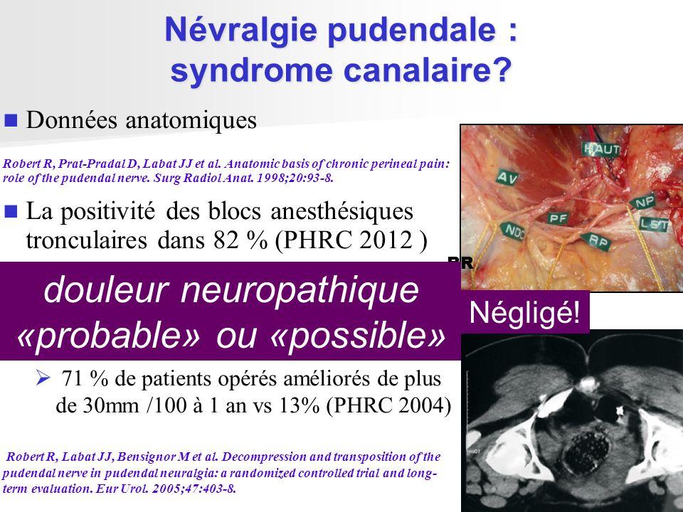 Névralgie pudendale : syndrome canalaire? Données anatomiques Robert R, Prat-Pradal D, Labat JJ et al. Anatomic basis of chronic perineal pain: role o