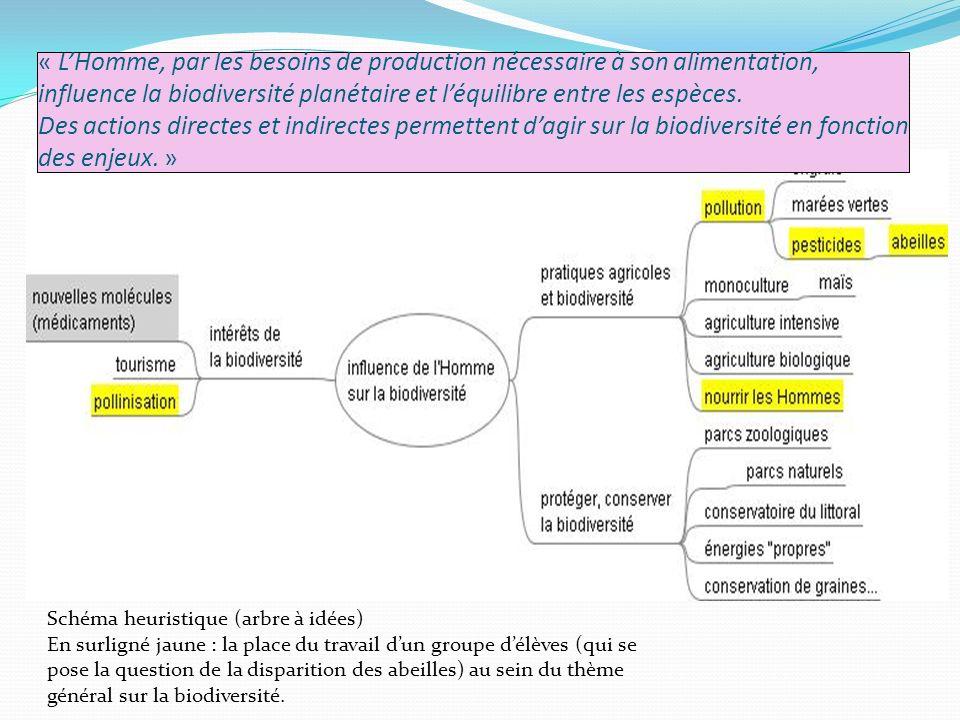 Schéma heuristique (arbre à idées) En surligné jaune : la place du travail dun groupe délèves (qui se pose la question de la disparition des abeilles) au sein du thème général sur la biodiversité.