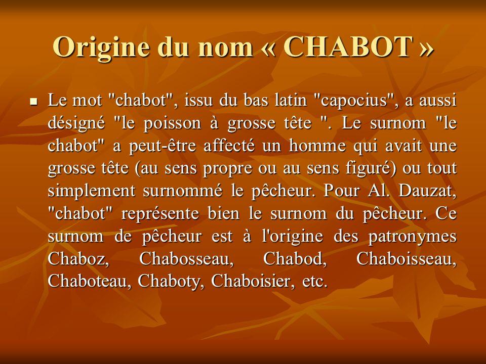 En 1784, le seigneur du Parc, Pierre Bonfils, ruiné, a vendu la propriété au comte Charles Augustin de Chabot.