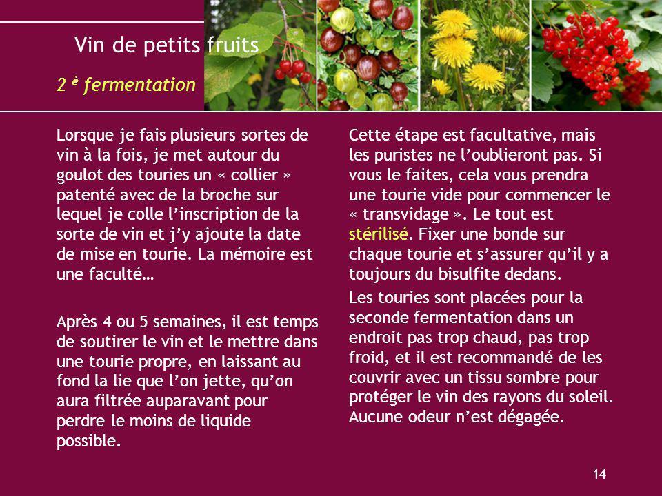 Vin de petits fruits 14 Lorsque je fais plusieurs sortes de vin à la fois, je met autour du goulot des touries un « collier » patenté avec de la broch