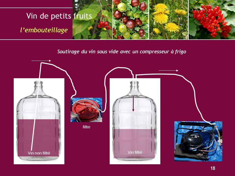 Vin de petits fruits 18 lembouteillage Soutirage du vin sous vide avec un compresseur à frigo Vin non filtré Vin filtré filtre