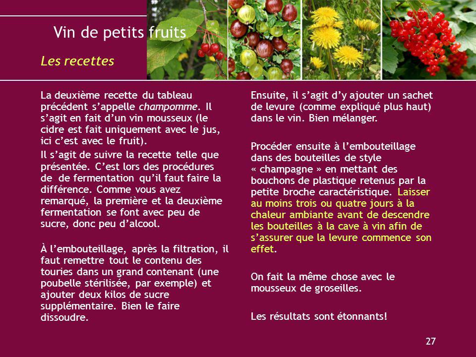 Vin de petits fruits 27 La deuxième recette du tableau précédent sappelle champomme. Il sagit en fait dun vin mousseux (le cidre est fait uniquement a