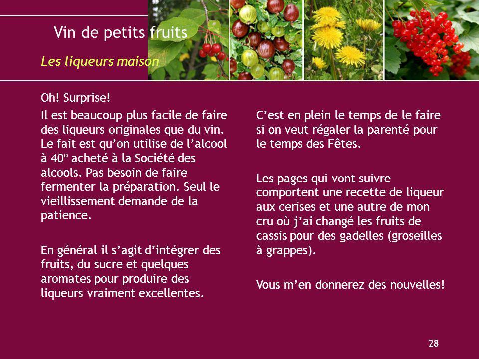 Vin de petits fruits 28 Oh! Surprise! Il est beaucoup plus facile de faire des liqueurs originales que du vin. Le fait est quon utilise de lalcool à 4