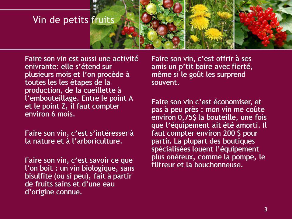 Vin de petits fruits 3 Faire son vin est aussi une activité enivrante: elle sétend sur plusieurs mois et lon procède à toutes les les étapes de la pro
