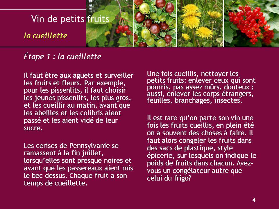 Vin de petits fruits 4 Étape 1 : la cueillette Il faut être aux aguets et surveiller les fruits et fleurs. Par exemple, pour les pissenlits, il faut c