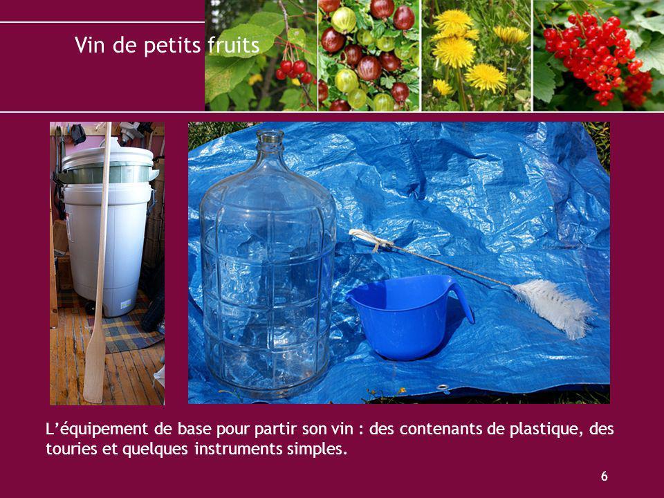 Vin de petits fruits 6 Léquipement de base pour partir son vin : des contenants de plastique, des touries et quelques instruments simples.