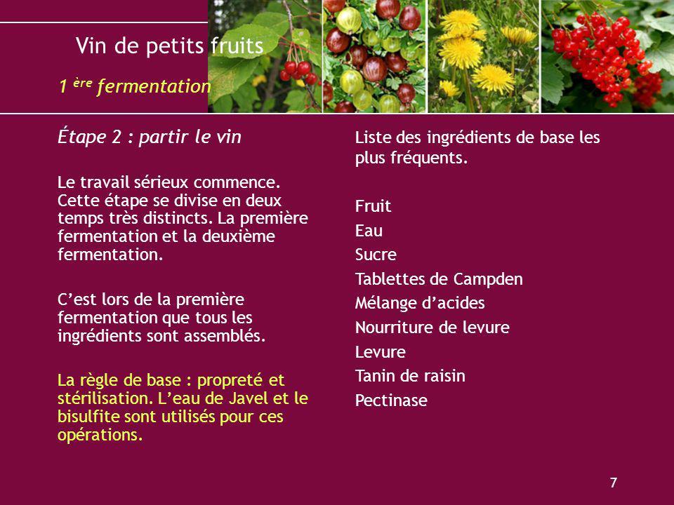Vin de petits fruits 7 Étape 2 : partir le vin Le travail sérieux commence. Cette étape se divise en deux temps très distincts. La première fermentati
