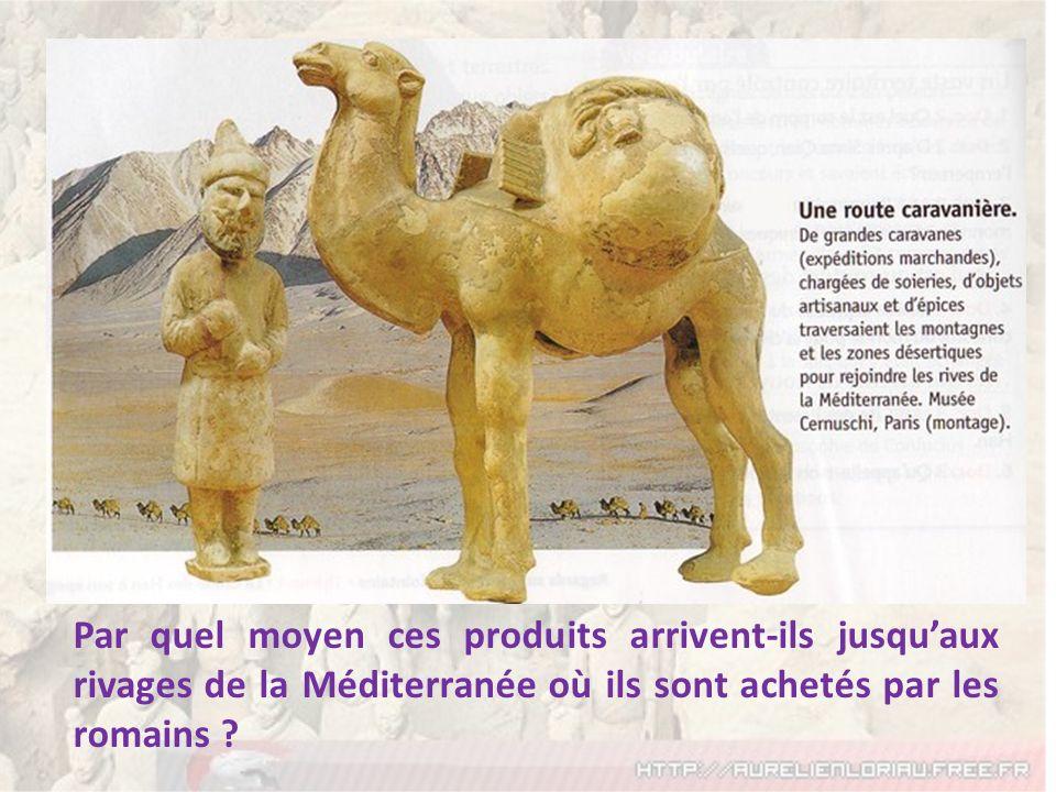 Par quel moyen ces produits arrivent-ils jusquaux rivages de la Méditerranée où ils sont achetés par les romains ?