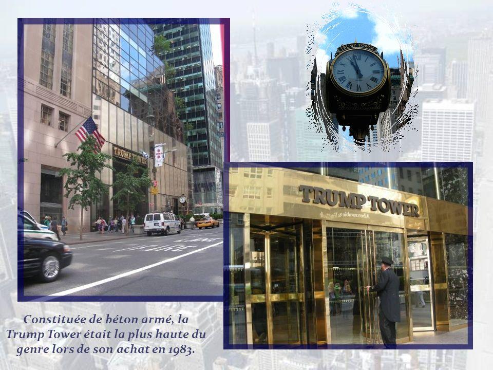 Entre les 59 e et 34 e rues, on retrouve les magasins de luxe les plus célèbres au monde tant dans le domaine de la mode que dans celui des objets dar