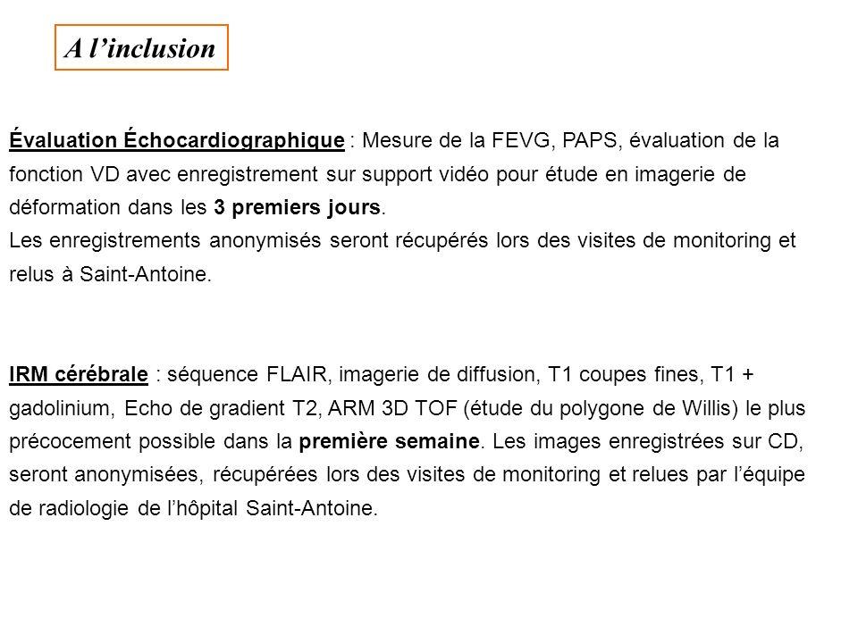 Évaluation Échocardiographique : Mesure de la FEVG, PAPS, évaluation de la fonction VD avec enregistrement sur support vidéo pour étude en imagerie de