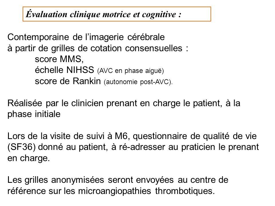 Évaluation clinique motrice et cognitive : Contemporaine de limagerie cérébrale à partir de grilles de cotation consensuelles : score MMS, échelle NIHSS (AVC en phase aiguë) score de Rankin (autonomie post-AVC).
