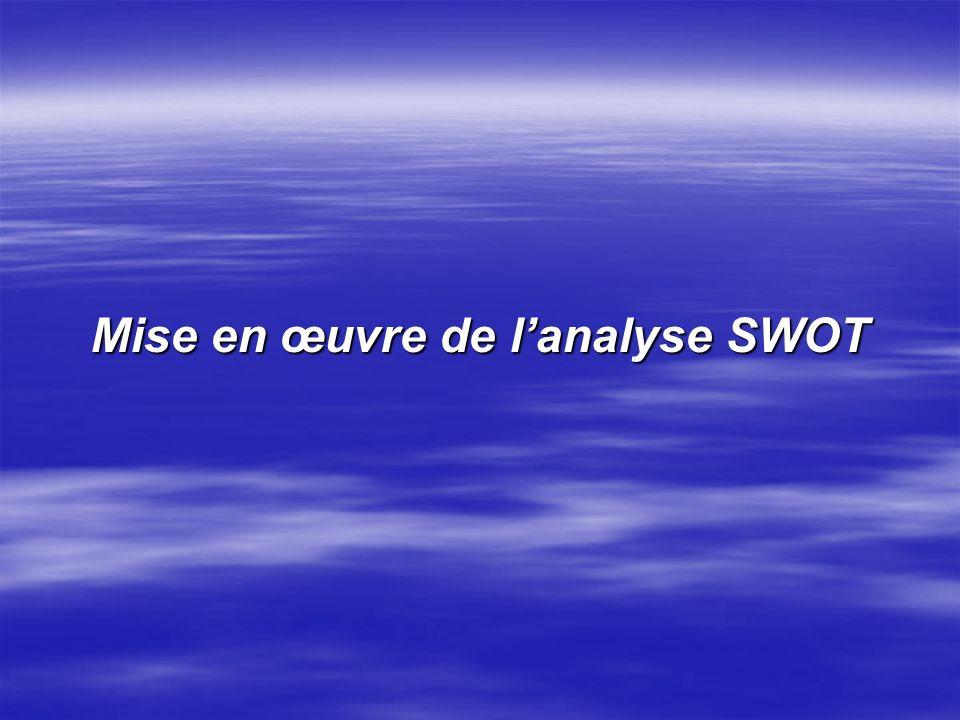 Limites de lanalyse SWOT : Même bien structuré, lanalyse SWOT reste un outil subjectif : Même bien structuré, lanalyse SWOT reste un outil subjectif :