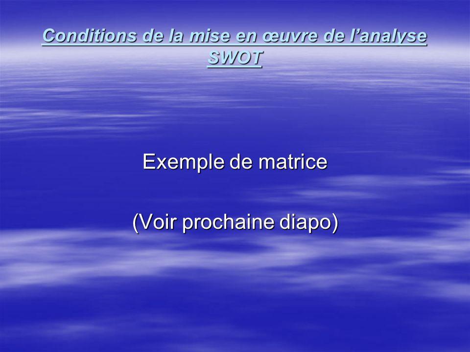Conditions de la mise en œuvre de lanalyse SWOT Points importants à examiner ( suite ) 2. le niveau d'analyse: 2. le niveau d'analyse: 1-Atelier n° 01