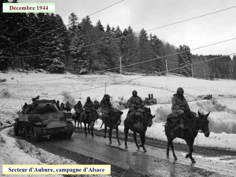 3 décembre 1944 Contre-attaque dans la forêt de La Harth (Alsace)