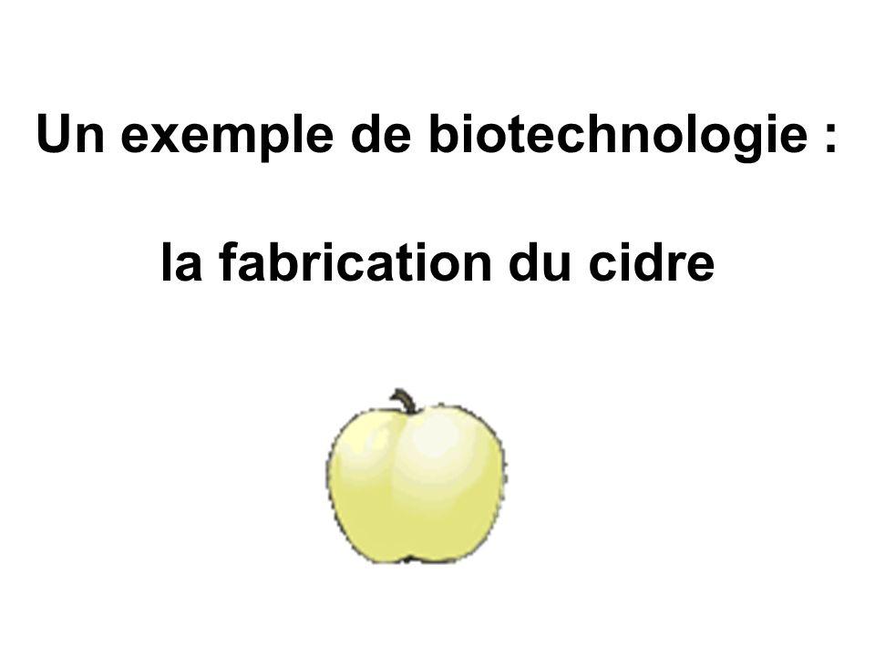 Marc de pommeMoût de pomme Glucose C 6 H 12 O 6 pressageRapage 2 Dioxyde de carbone CO 2 2 Éthanol C 2 H 6 0 + Fermentation alcoolique effectuée par les levures Levures Pomme