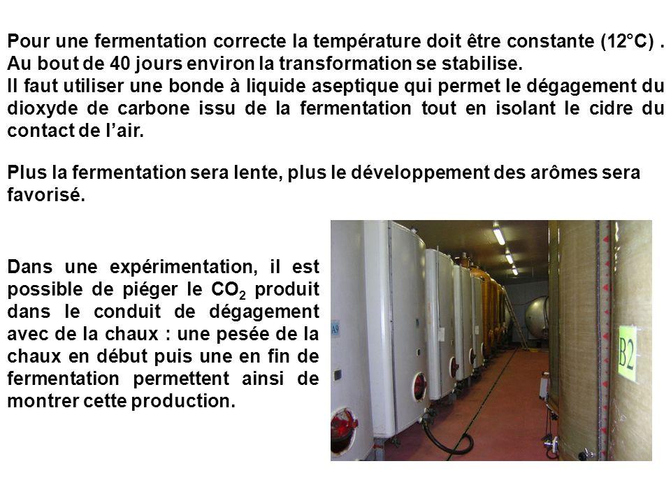 Plus la fermentation sera lente, plus le développement des arômes sera favorisé. Pour une fermentation correcte la température doit être constante (12