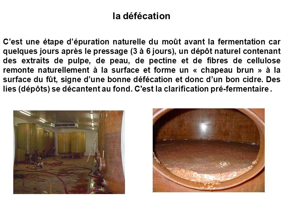Cest une étape dépuration naturelle du moût avant la fermentation car quelques jours après le pressage (3 à 6 jours), un dépôt naturel contenant des e